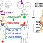 しつこい肩の痛み、腎臓機能の回復を含めたオステオパシーの整体例