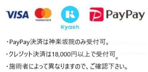 クレジット決済、PayPay決済